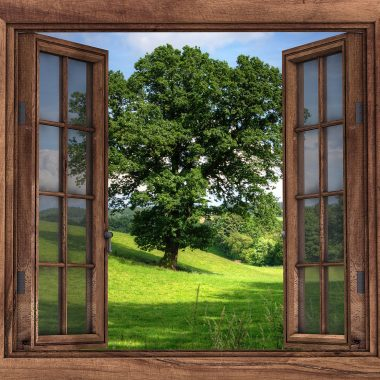 window-2994497_1280